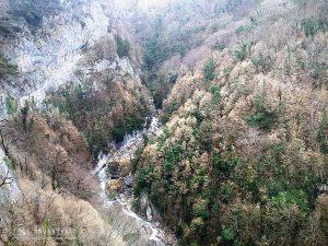 batumi_prirodnye_chudesa_gruzii4